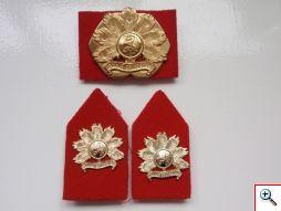 m_regiment infanterie oranje gelderland